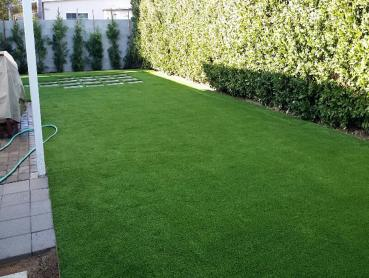 Artificial Grass Photos: Artificial Grass Black Point-Green Point, California Lawn And Landscape, Backyard Garden Ideas