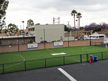 Artificial Grass Photos: Artificial Grass Carpet Belmont, California Sports Athority, Commercial Landscape