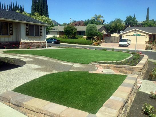 Artificial Grass French Camp, California Landscape Ideas artificial grass
