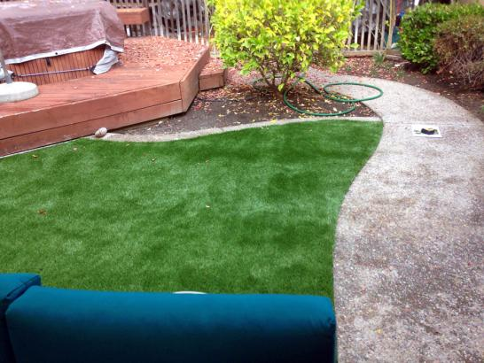 Artificial Grass Photos: Artificial Lawn Shackelford, California Design Ideas, Small Backyard Ideas