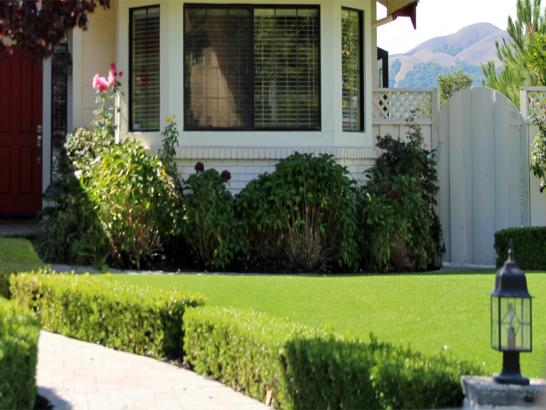 Artificial Grass Photos: Fake Grass Carpet Discovery Bay, California Lawns, Front Yard Landscaping Ideas