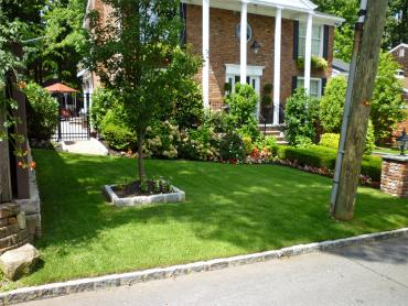Fake Lawn Clarksburg, California Backyard Playground, Front Yard Design artificial grass