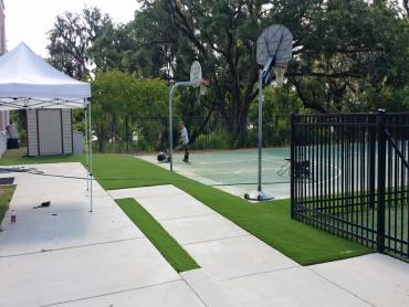 Artificial Grass Photos: Fake Lawn Rio Vista, California Landscape Design, Commercial Landscape