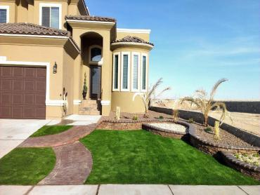 Fake Turf Moss Beach, California Design Ideas, Landscaping Ideas For Front Yard artificial grass