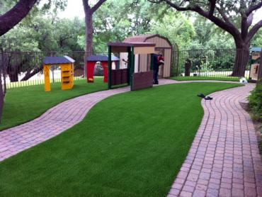 Fake Turf Palo Alto, California Design Ideas, Commercial Landscape artificial grass