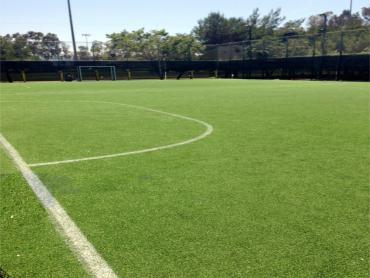 Artificial Grass Photos: Grass Turf Mountain View, California Sports Athority