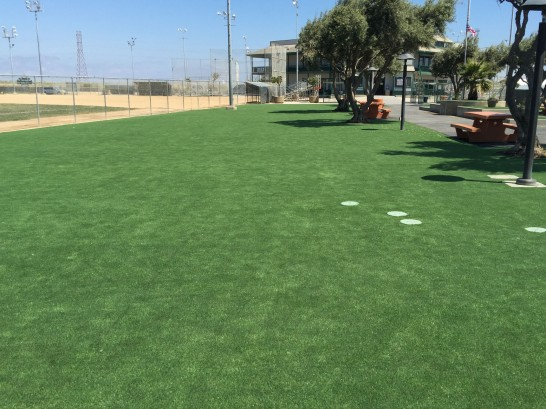 Grass Turf Tracy, California Landscape Photos, Recreational Areas artificial grass