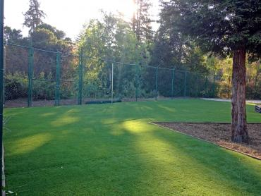 Green Lawn Occidental, California Landscaping, Parks artificial grass