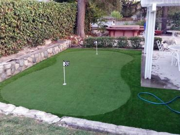 Artificial Grass Photos: Lawn Services Fairfield, California City Landscape, Backyard Design