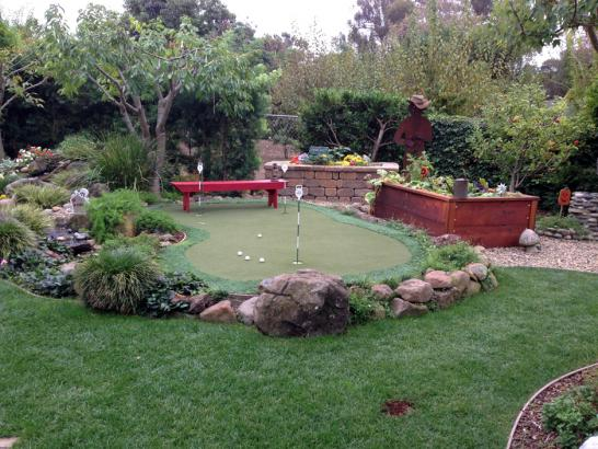 Artificial Grass Photos: Lawn Services Mount Hermon, California Design Ideas, Backyard Landscaping