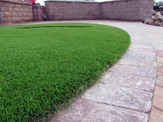 Artificial Grass Photos: Synthetic Turf Supplier Campbell, California Dogs, Landscaping Ideas For Front Yard