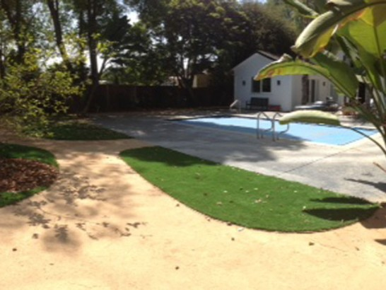 Artificial Grass Photos: Turf Grass Forestville, California Lawns, Backyard Designs