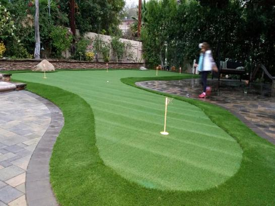 Artificial Grass Photos: Turf Grass Herald, California Office Putting Green, Backyard Landscape Ideas