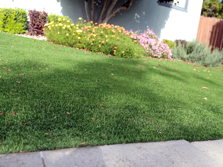 synthetic grass cost modesto california lawn and landscape front yard landscaping ideas - Synthetic Grass Cost