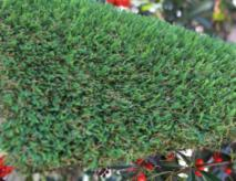 Artificial Grass United States